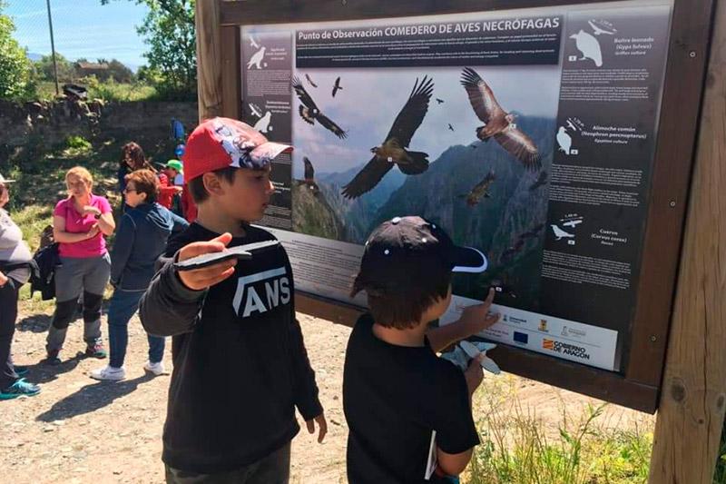 Escolares del Sobrarbe se sensibilizan con la conservación natural, de la mano de la Fundación Quebrantahuesos y Caja Rural de Aragón