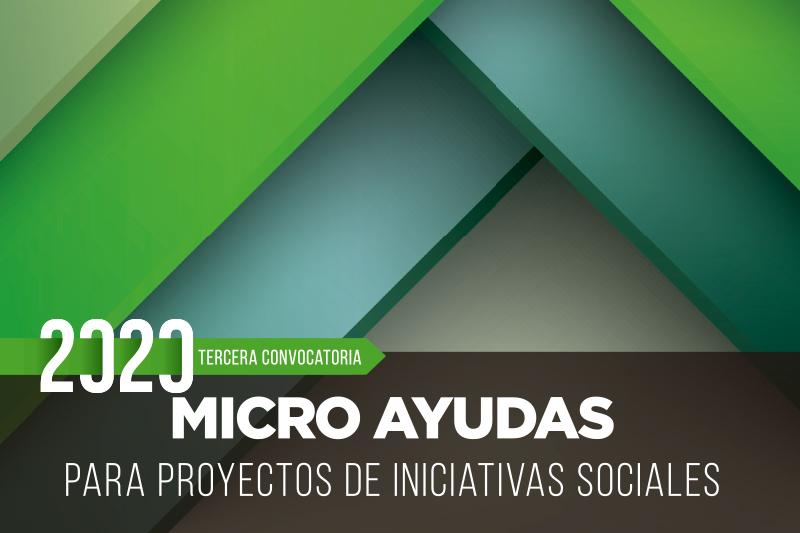 microayudas 2020